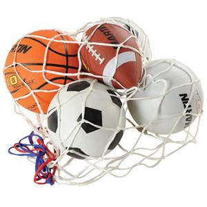 net holding football, soccer ball, basketball, volleyball